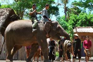 taman-safari7